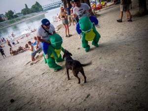 Maxime et son déguisement de dinosaure sur les rives du Danube- Août 2015