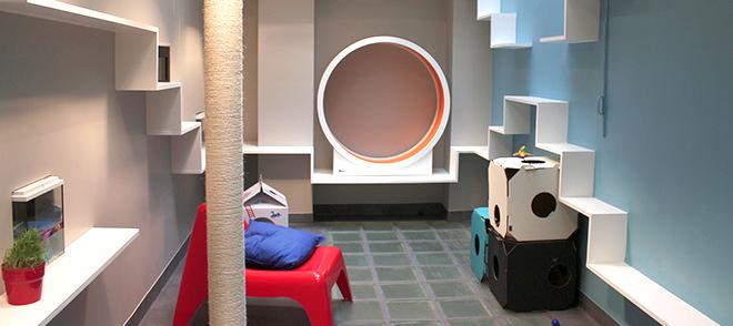 paris l h tel insolite pour chats. Black Bedroom Furniture Sets. Home Design Ideas